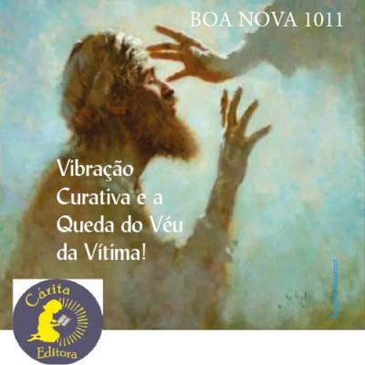 Boa Nova 1011